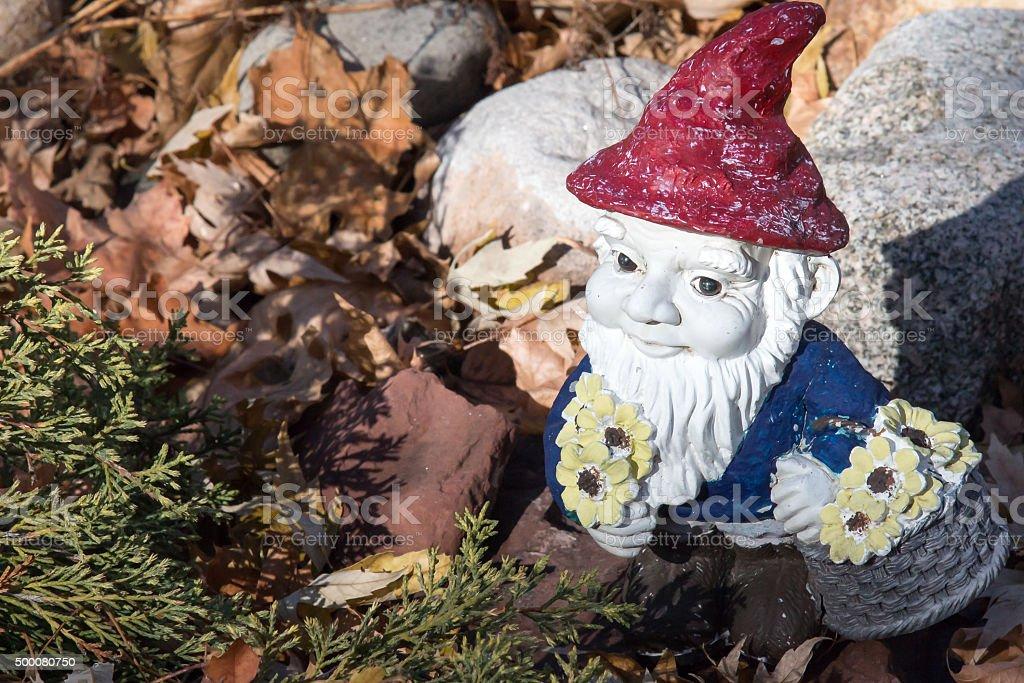Garden gnome nestled in autumn foliage stock photo