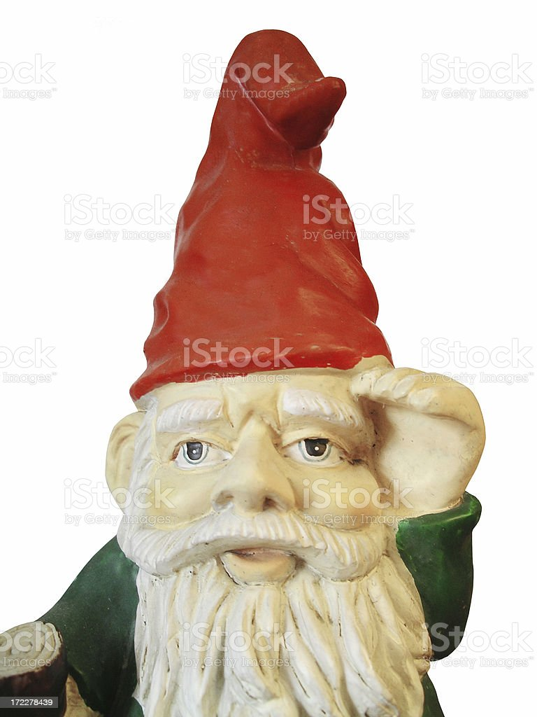 Garden gnome on the look-out stock photo