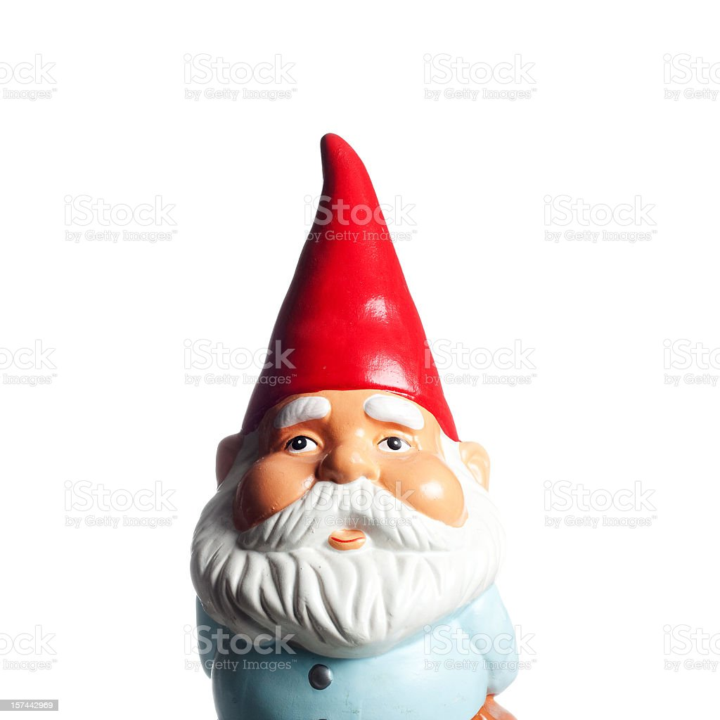 Garden Gnome Portrait royalty-free stock photo