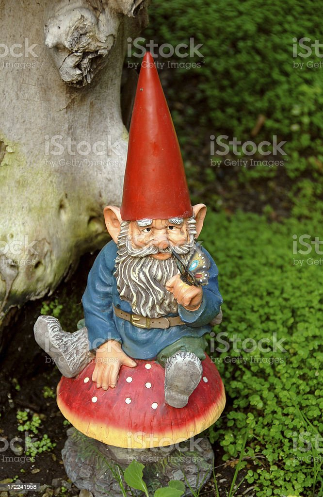 Garden Gnome Sitting on Mushroom, Formal Gardening Feature & Decoration stock photo