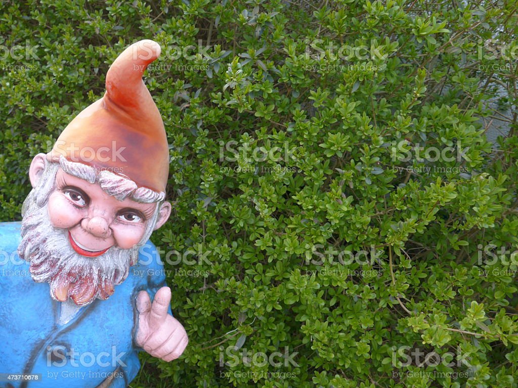 Garden Gnome with lantern in front of a boxwood hedge stock photo