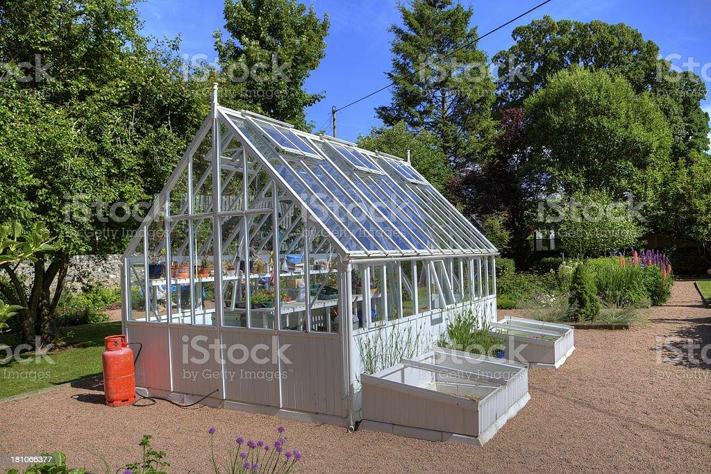 Garden Greenhouse in Summer Sunshine stock photo