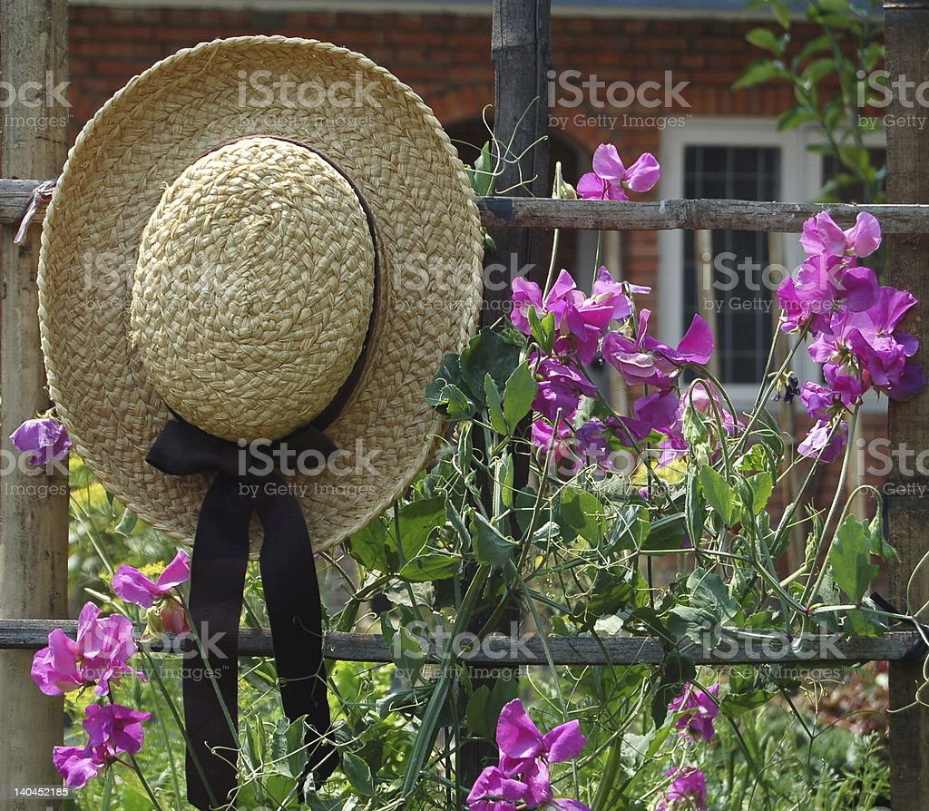 Garden hat hanging on a fence next to purple flowers stock photo