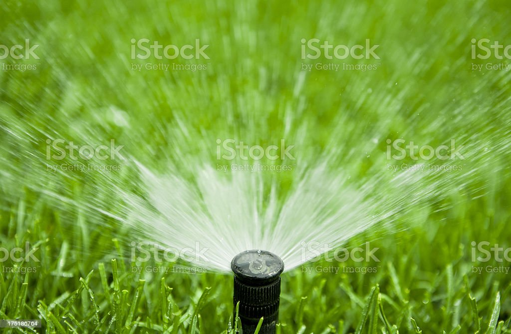 Garden Hose Sprinkler royalty-free stock photo