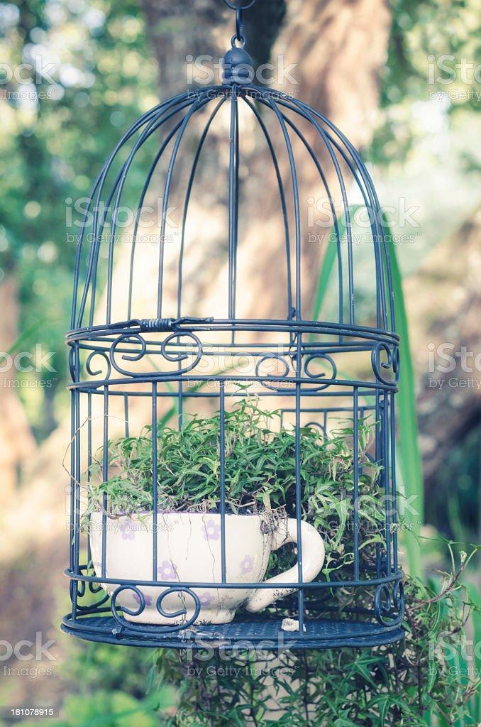 garden ideas royalty-free stock photo