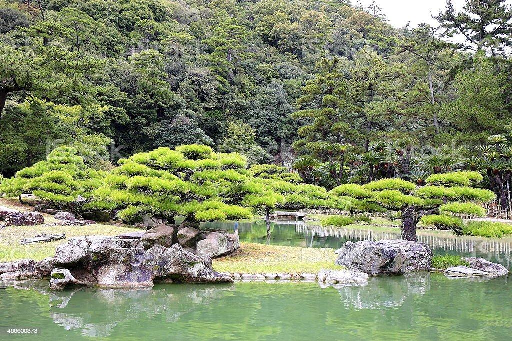 Garden in a small lake stock photo