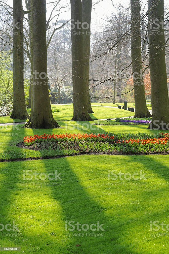 Garden in early spring royalty-free stock photo