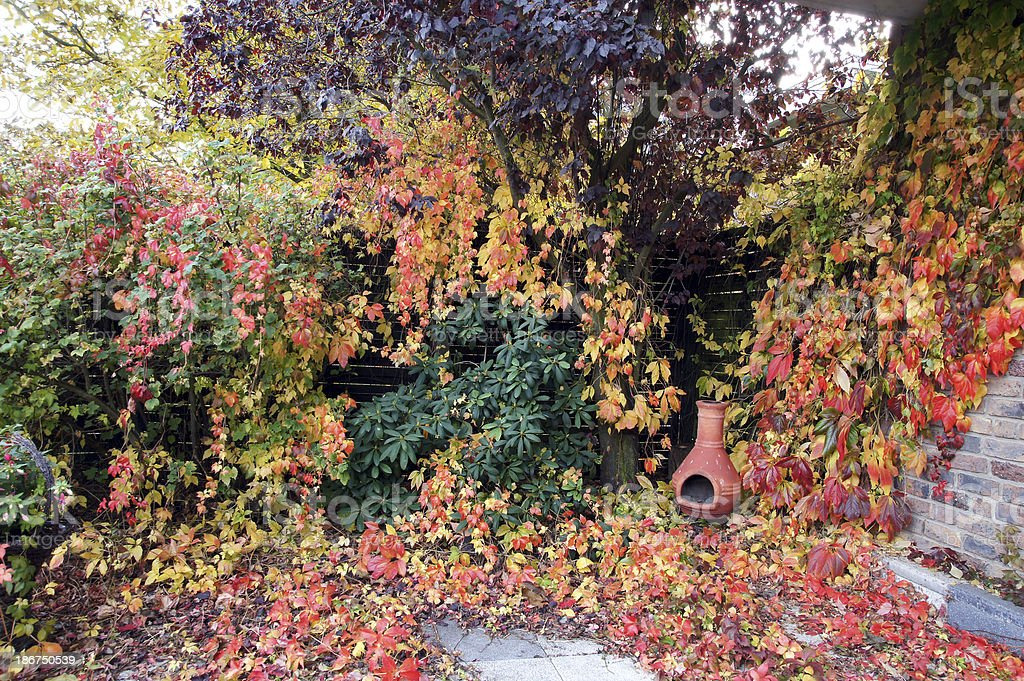 GArden in fall coloring royalty-free stock photo