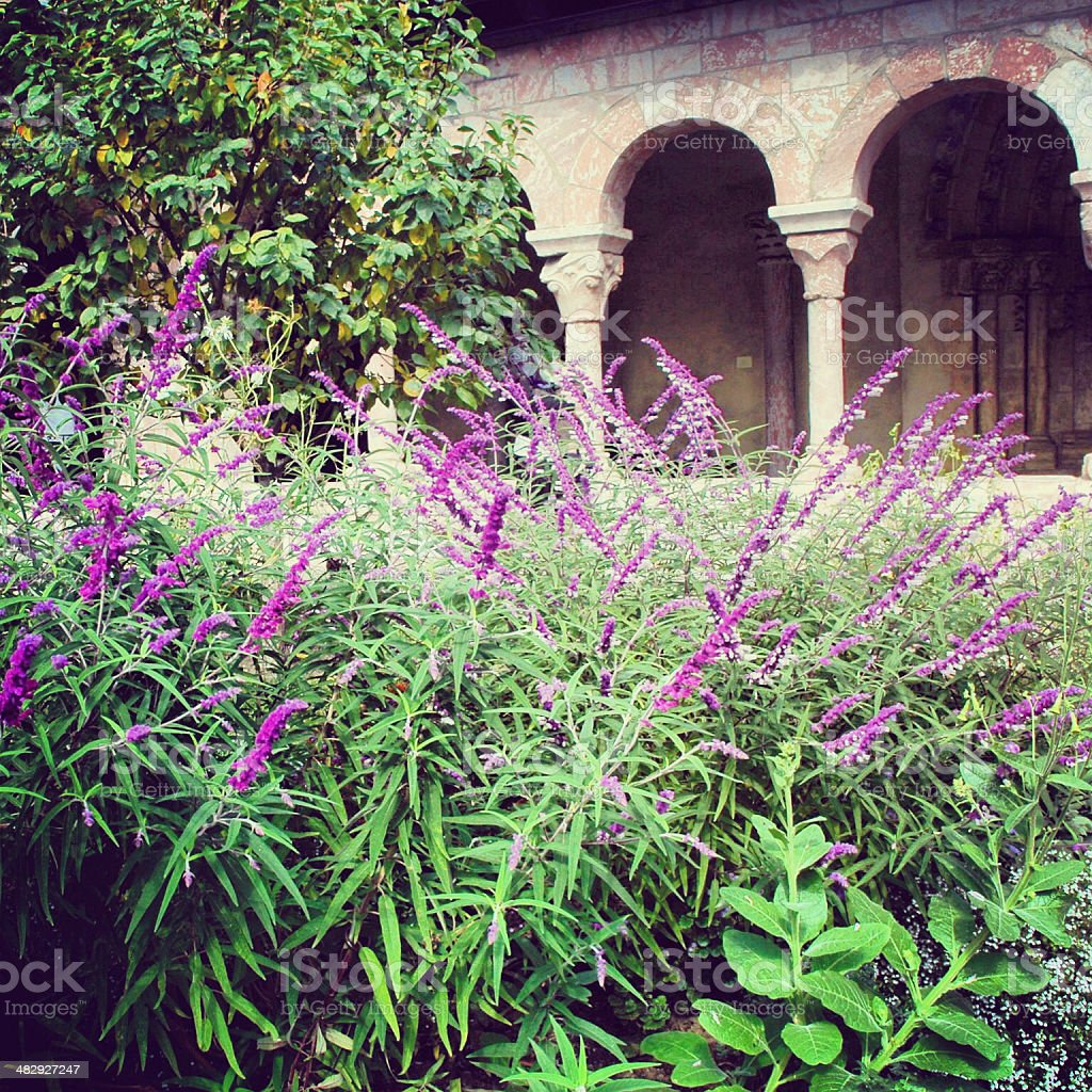 Garden in the Cloisters stock photo