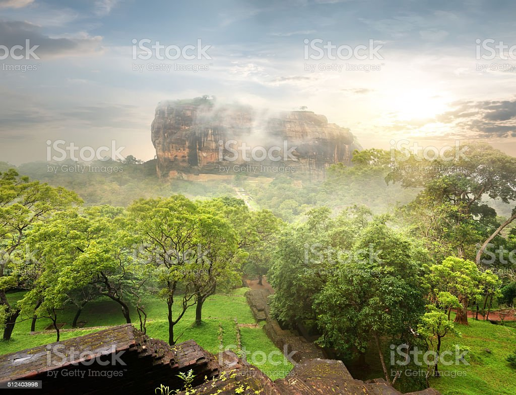 Garden near Sigiriya stock photo