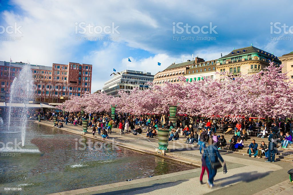 Garden of King, Kungstradgarden in Stockholm during spring stock photo