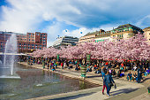 Garden of King, Kungstradgarden in Stockholm during spring