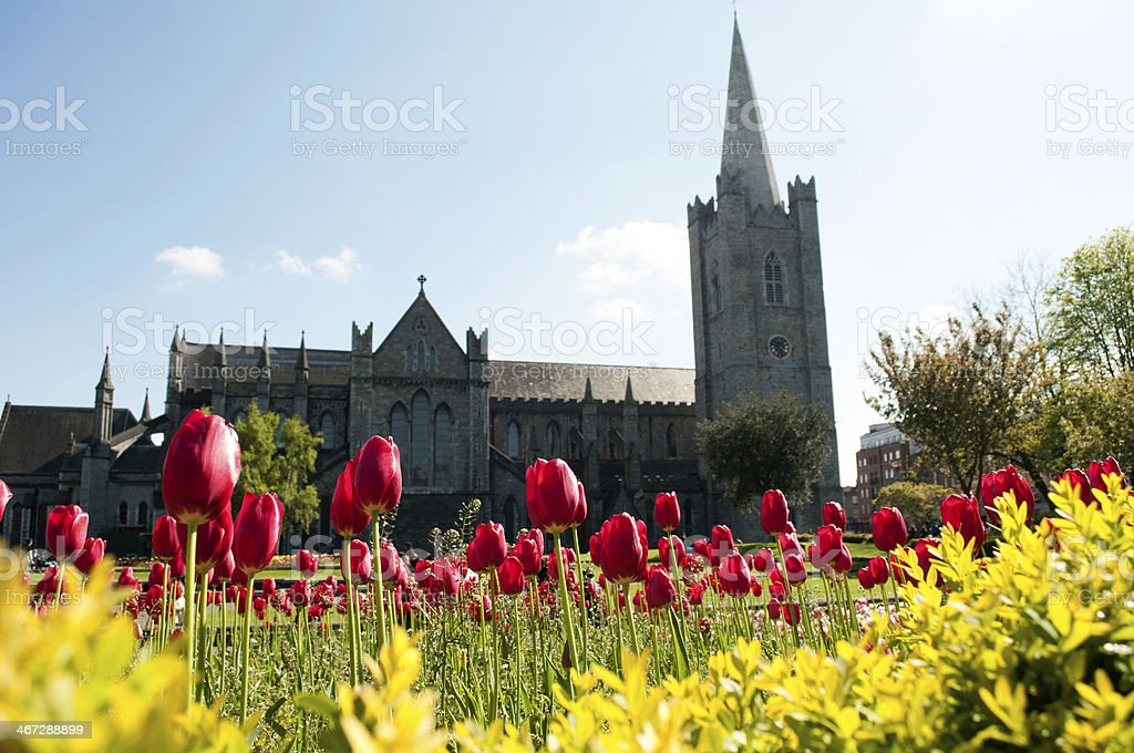 Garden of St. Patrick's Cathedral stock photo