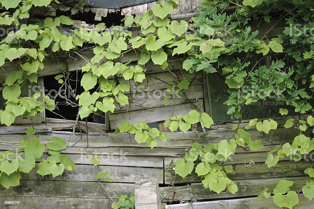 Garden - Old Barn with Happy face royalty-free stock photo