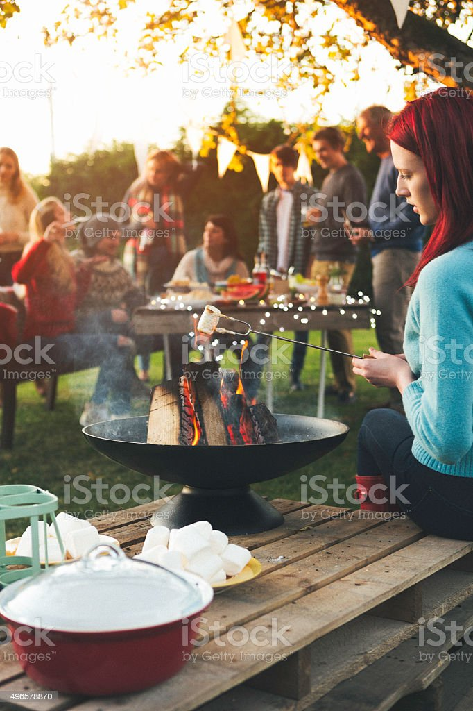 Garden Party BBQ stock photo