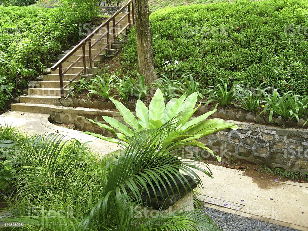 Garden Path and Steps stock photo