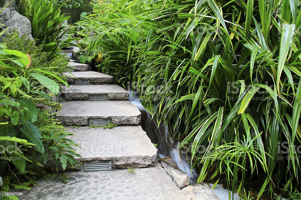 Garden Path: Stone staircase stock photo