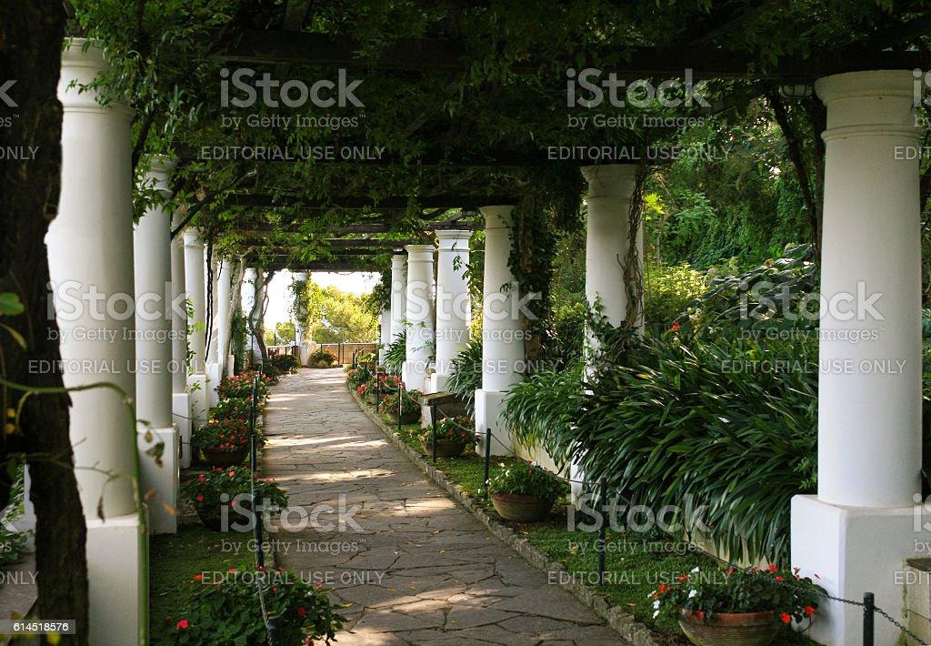 Garden Pergola at Villa San Michele, Capri, Italy. stock photo