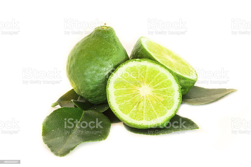 Garden picked Kaffir lime for Asian dish, isolated on white stock photo