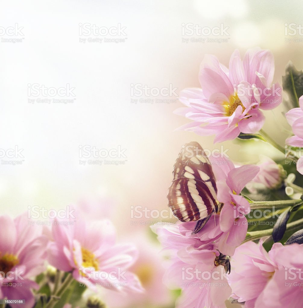 Garden royalty-free stock photo