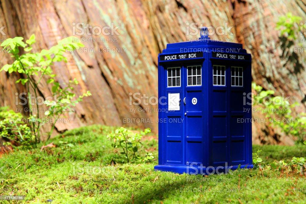 TARDIS Garden stock photo