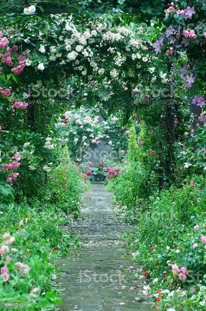Garden stock photo