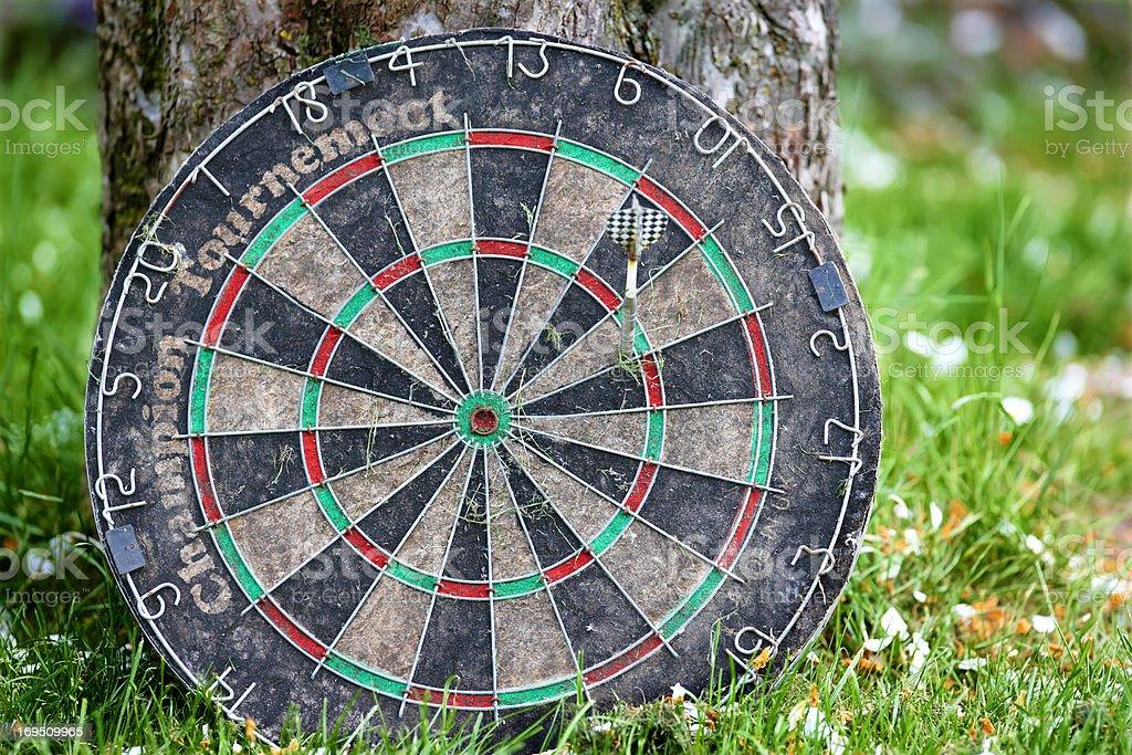 Garden play - darts royalty-free stock photo