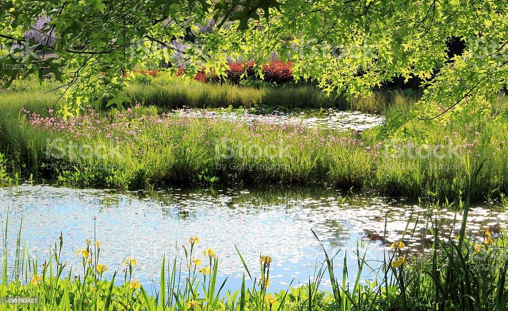 Garden ponds royalty-free stock photo