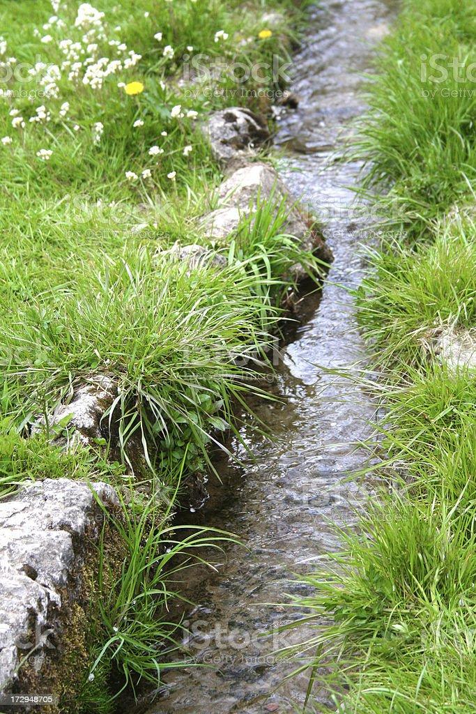 Garden river royalty-free stock photo