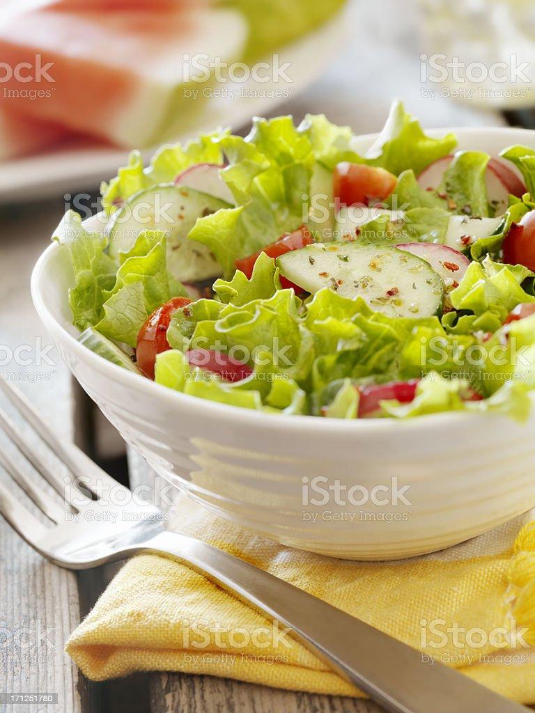 Garden Salad at a Picnic stock photo