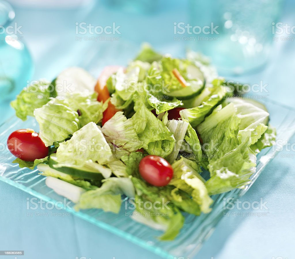 Garden salad with fresh vegetables on glass plate. royalty-free stock photo