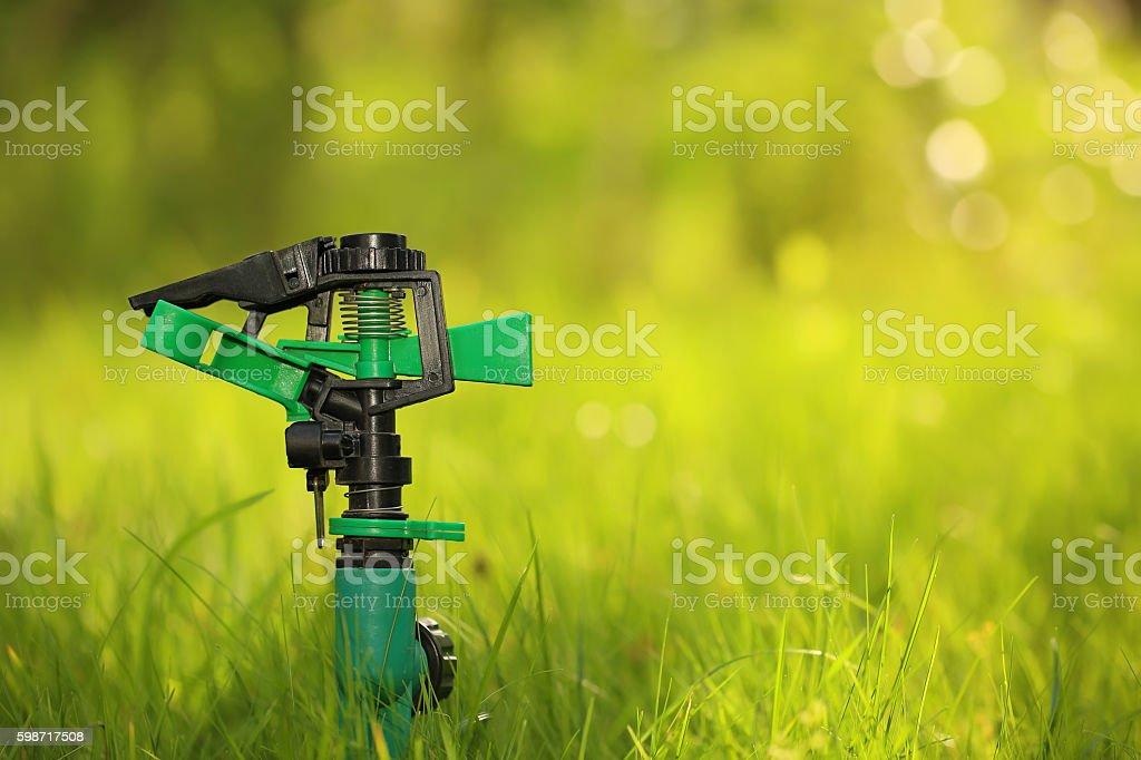 garden sprinkle stock photo