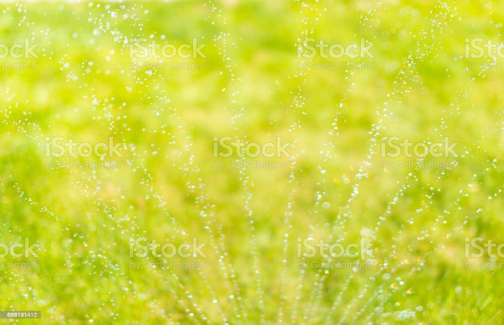 Garden sprinkler making rain and bokeh stock photo