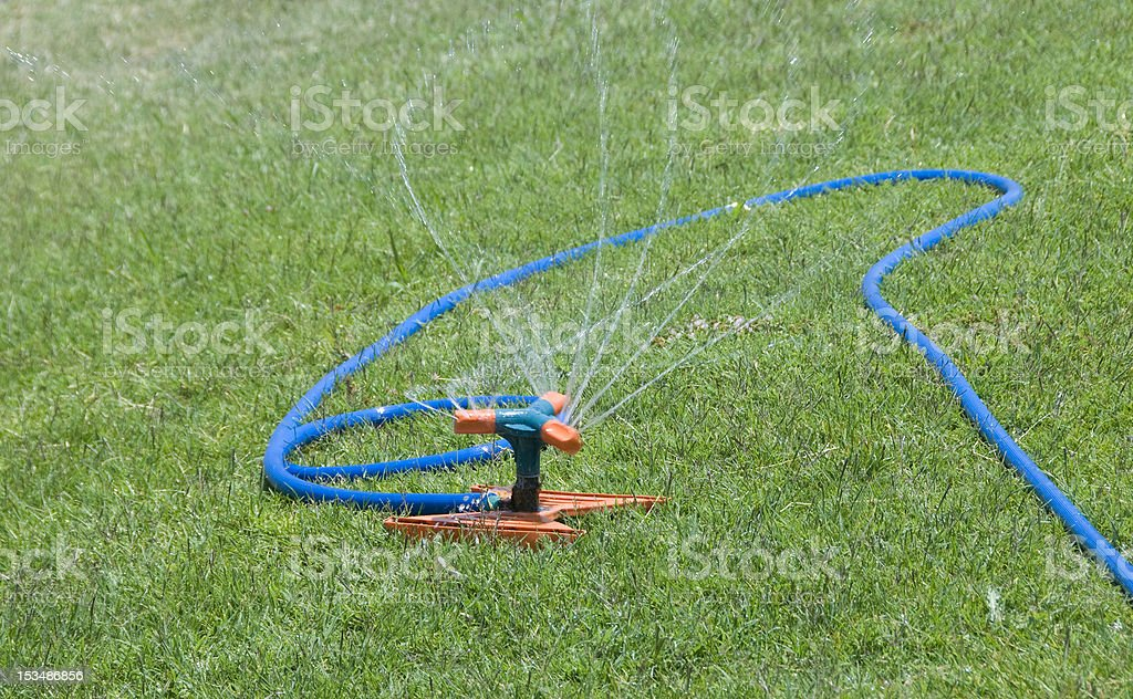 Garden Sprinkler stock photo