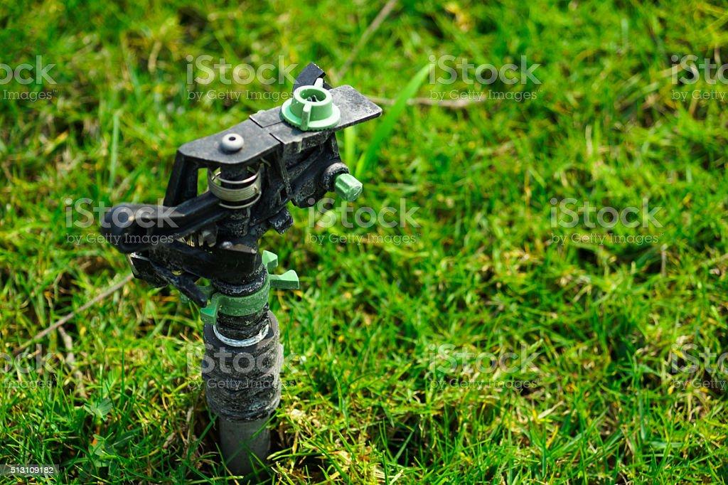 garden sprinkler stock photo