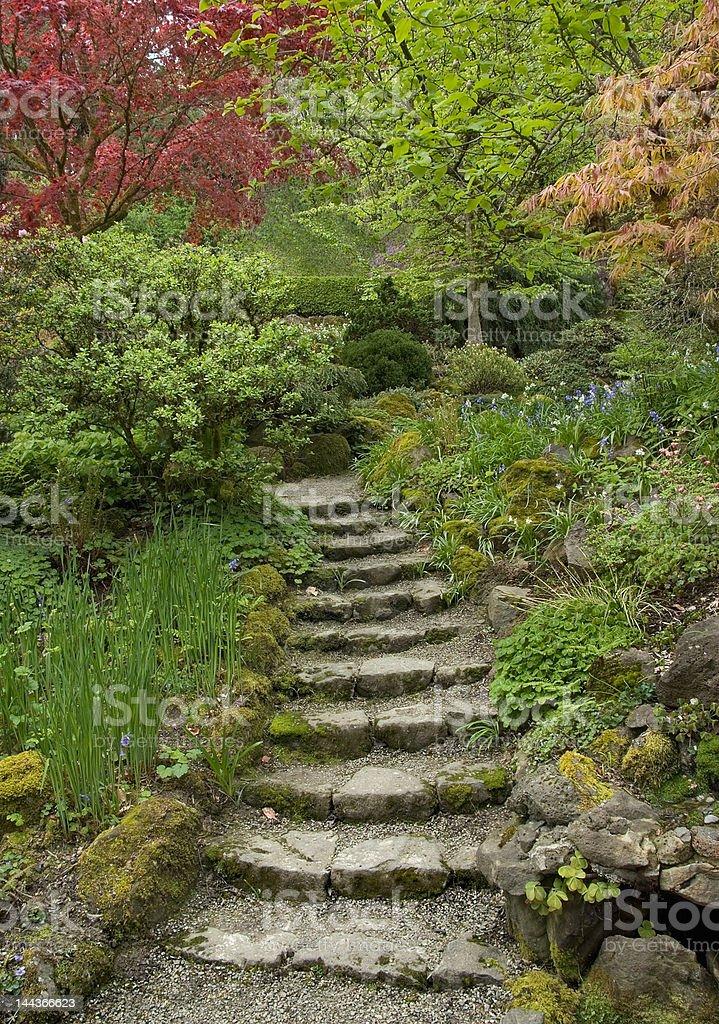 Garden Stairs stock photo