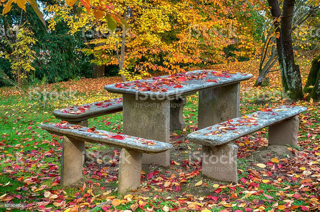 Garden table with benches in Autumn royalty-free stock photo