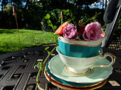 Garden Tea Party with Roses in Vintage Tea Cups