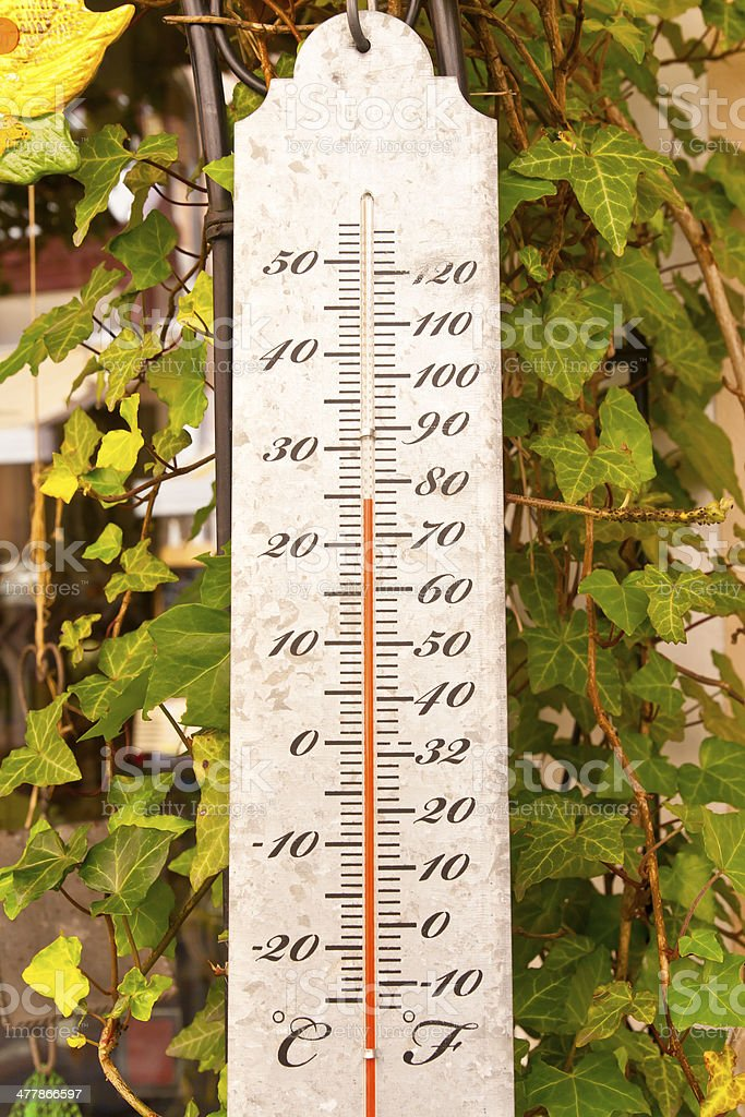 Garden Thermometer royalty-free stock photo