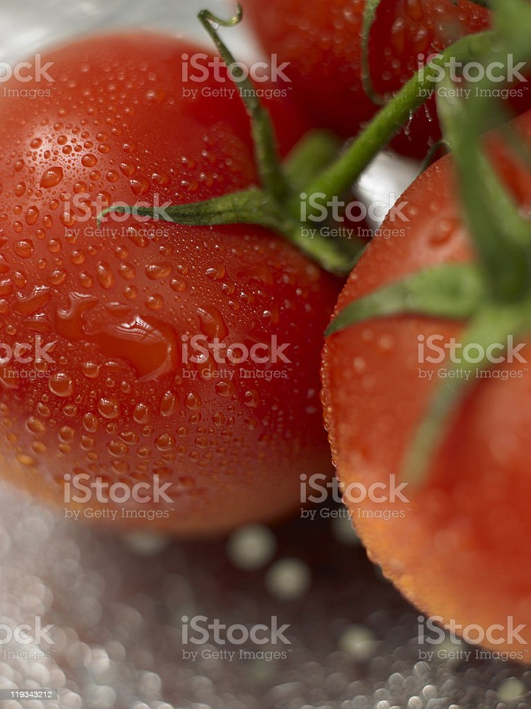 Garden Tomatoes royalty-free stock photo