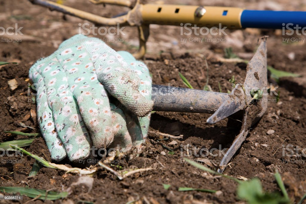 Garden Tools and Gloves royalty-free stock photo