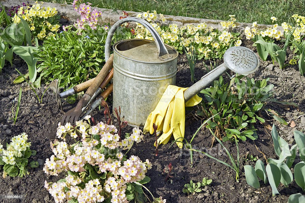 Garden tools close up royalty-free stock photo