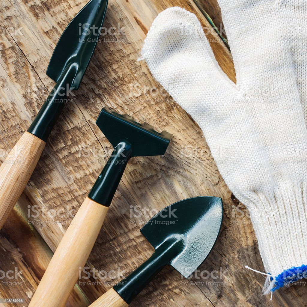 Garden tools - gloves, rakes and blades stock photo