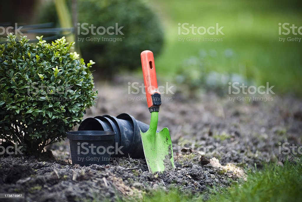 Garden Trowel royalty-free stock photo