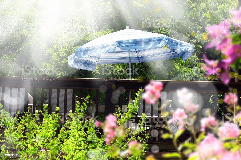 garden under light stock photo