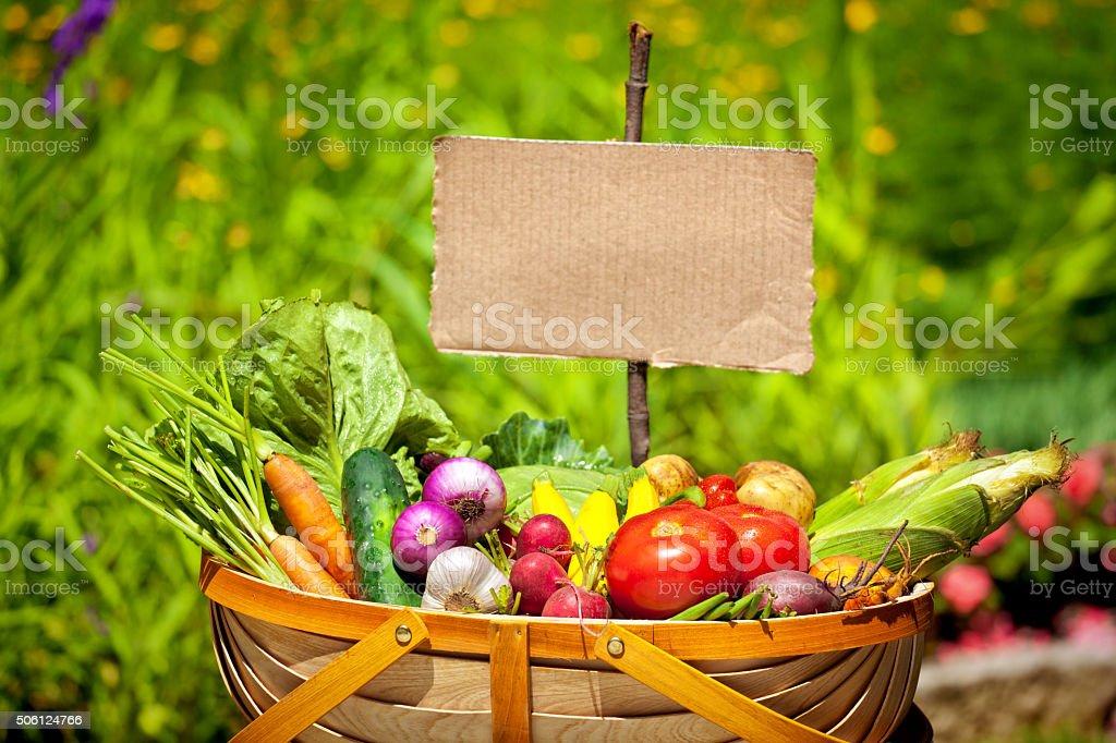 Garden Vegetable Harvest in Basket with Cardboard Sign Hz stock photo