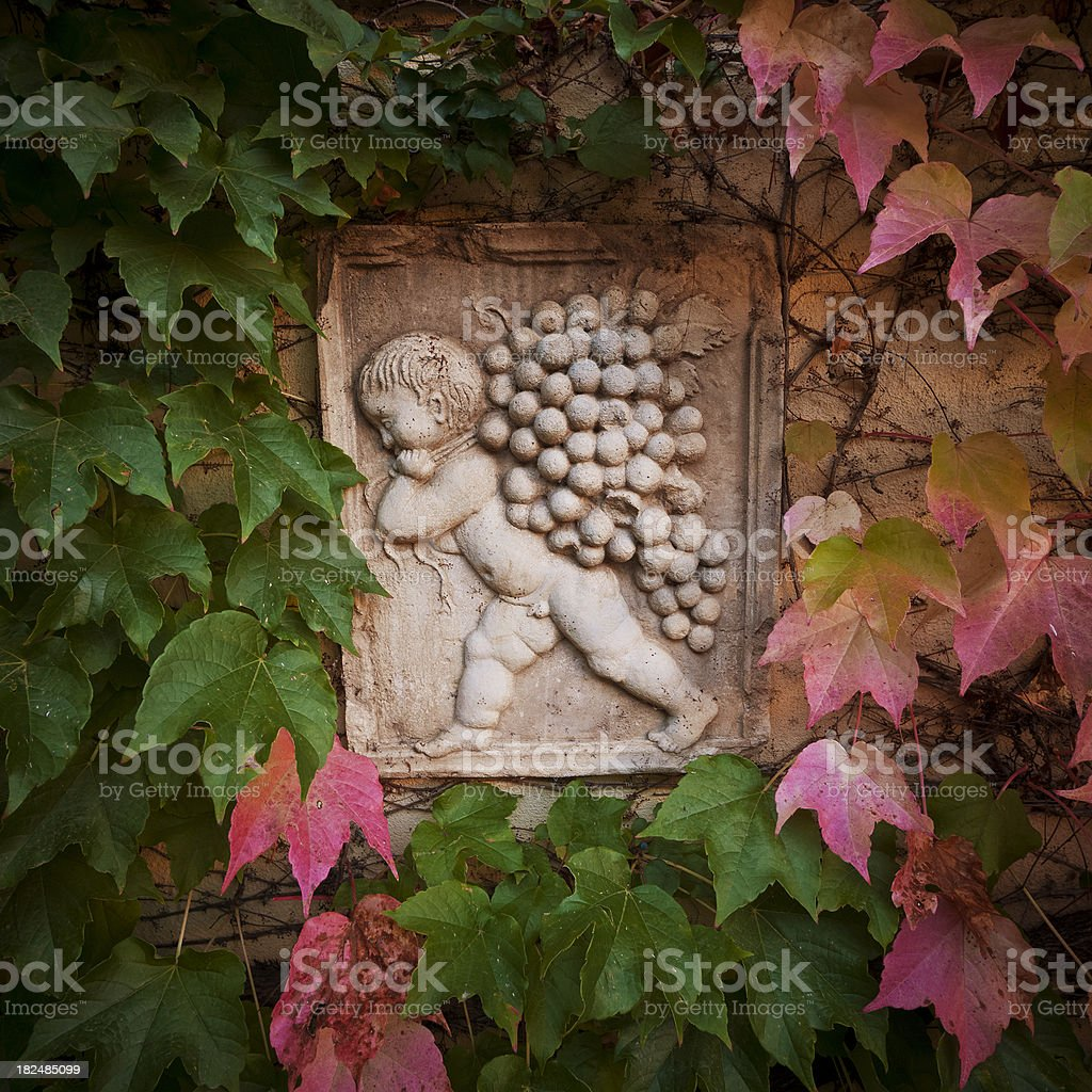 garden wall decor surrounded by creeper plant stock photo
