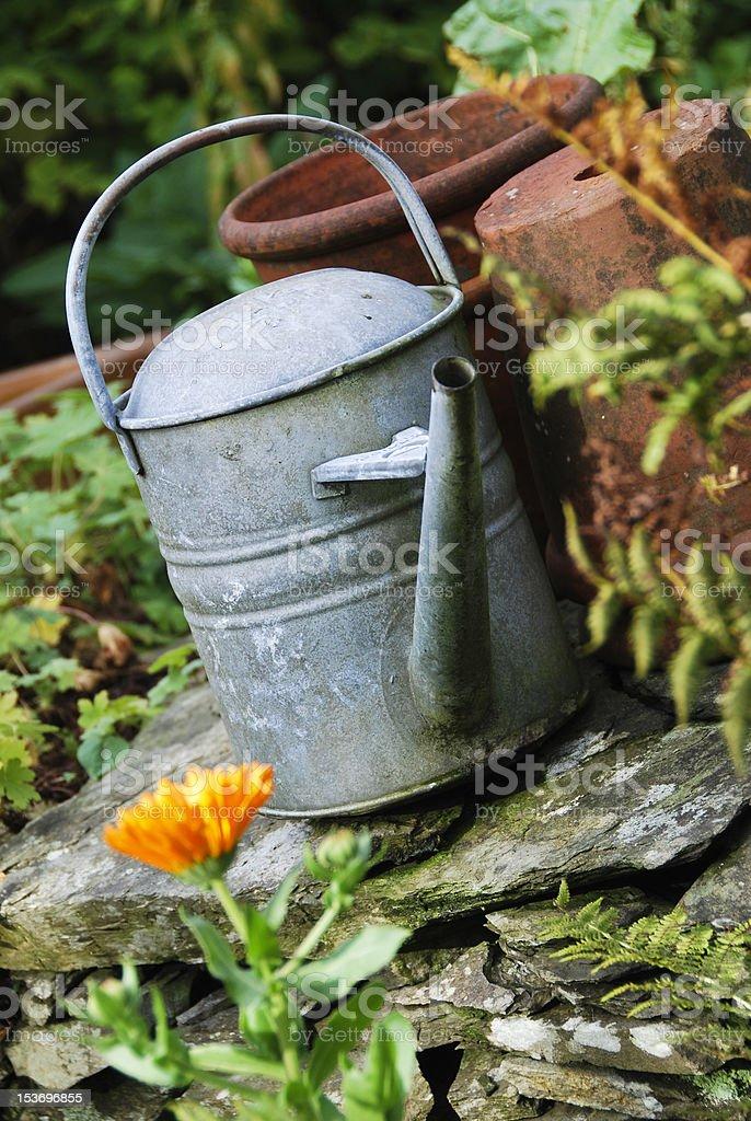 Garden Watering stock photo