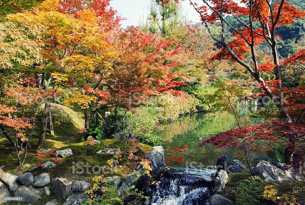 Garden with pond and fall foliage , Eikando Temple ,Kyoto,Japan royalty-free stock photo