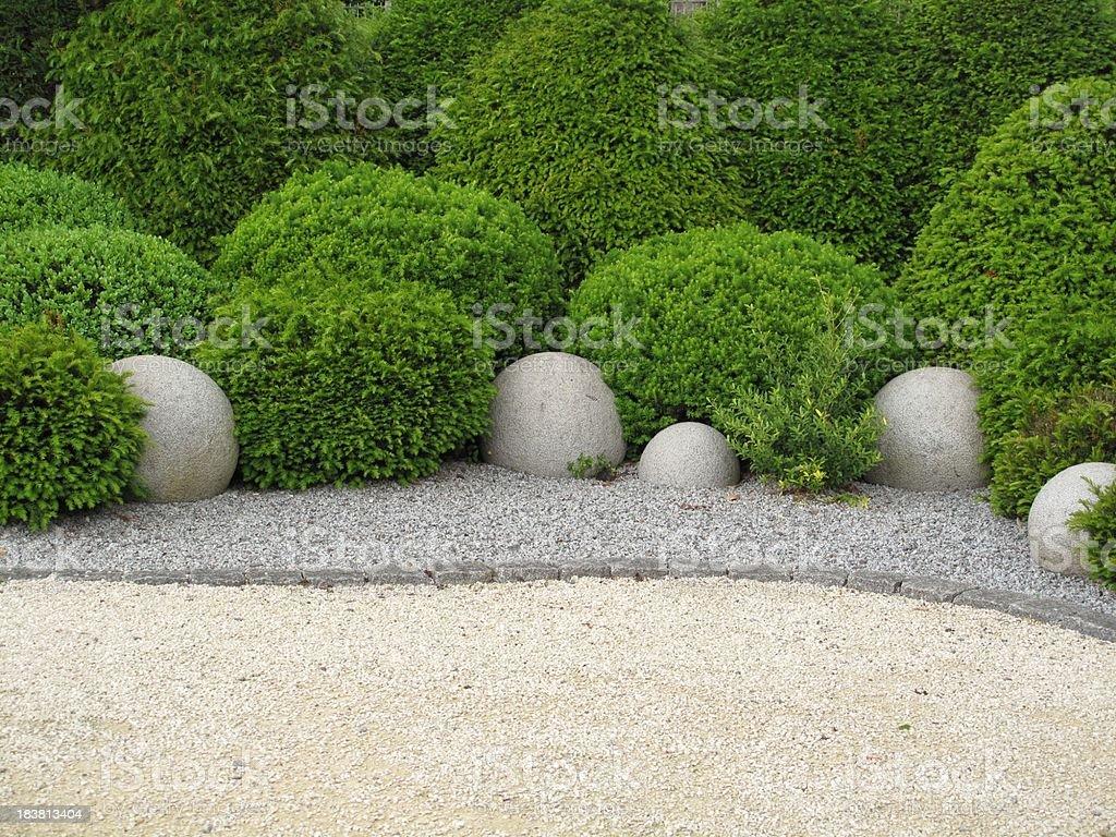 Garden with shrubs on a soil of stone royalty-free stock photo